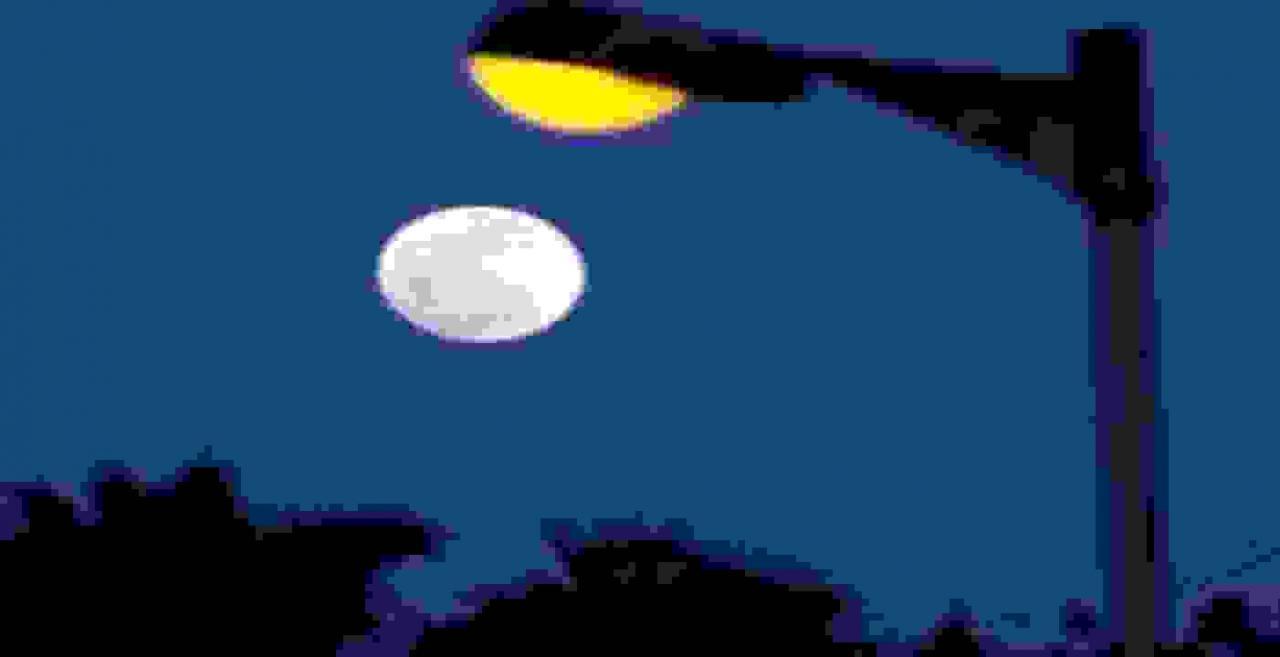 શરદ પૂર્ણિમાએ સાંજના સમયે ચંદ્રની પૂજા કરી આખો દિવસ ઉપવાસ કરવામાં આવે છે