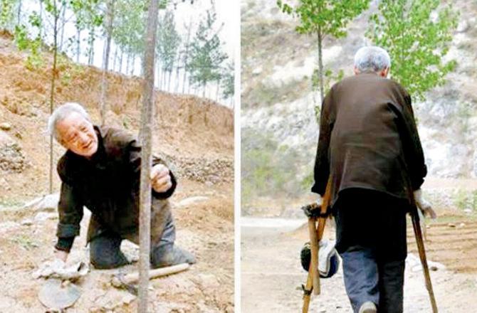 આ ભાઈએ પગ ન હોવા છતાં17,000 વૃક્ષો વાવ્યા