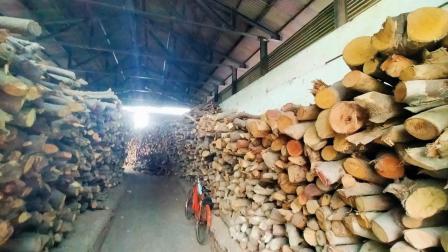 અમદાવાદના દુધેશ્વર મુક્તિધામ ખાતેના સ્મશઆનાં લાકડાંનો પૂરતો સ્ટૉક રાખવામાં આવ્યો છે
