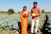 ખેડૂતે ઉગાડ્યાં જાંબુડી અને પીળા રંગના ઉચ્ચ પોષકતાવાળાં હાઇબ્રિડ ફ્લાવર