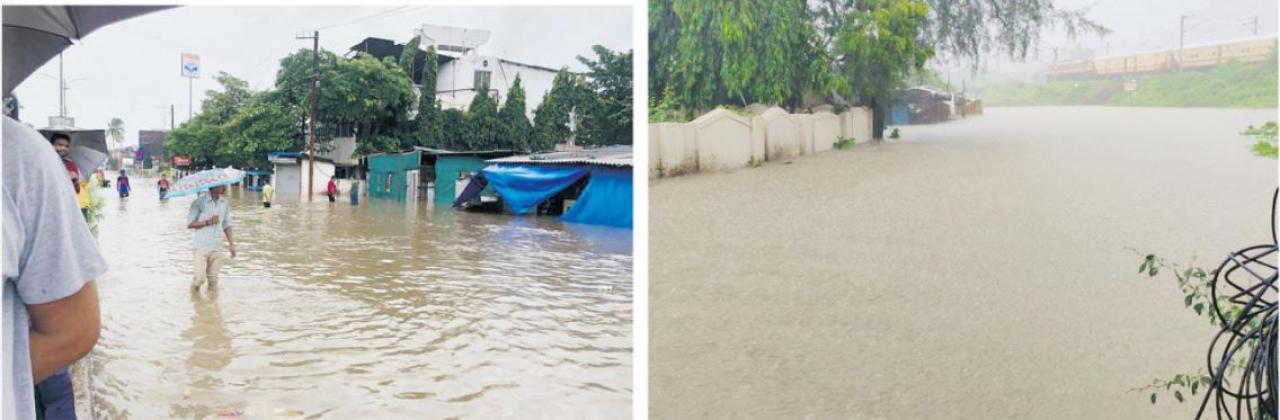 દક્ષિણ ગુજરાતમાં ગઈ કાલે સવારથી જ ભારે વરસાદ પડવાને કારણે રસ્તો જાણે નદી બની ગયો હતો. ઘરોમાં, દુકાનોમાં અને જાહેર સ્થાનોમાં પાણી ભરાઈ ગયાં હતાં.