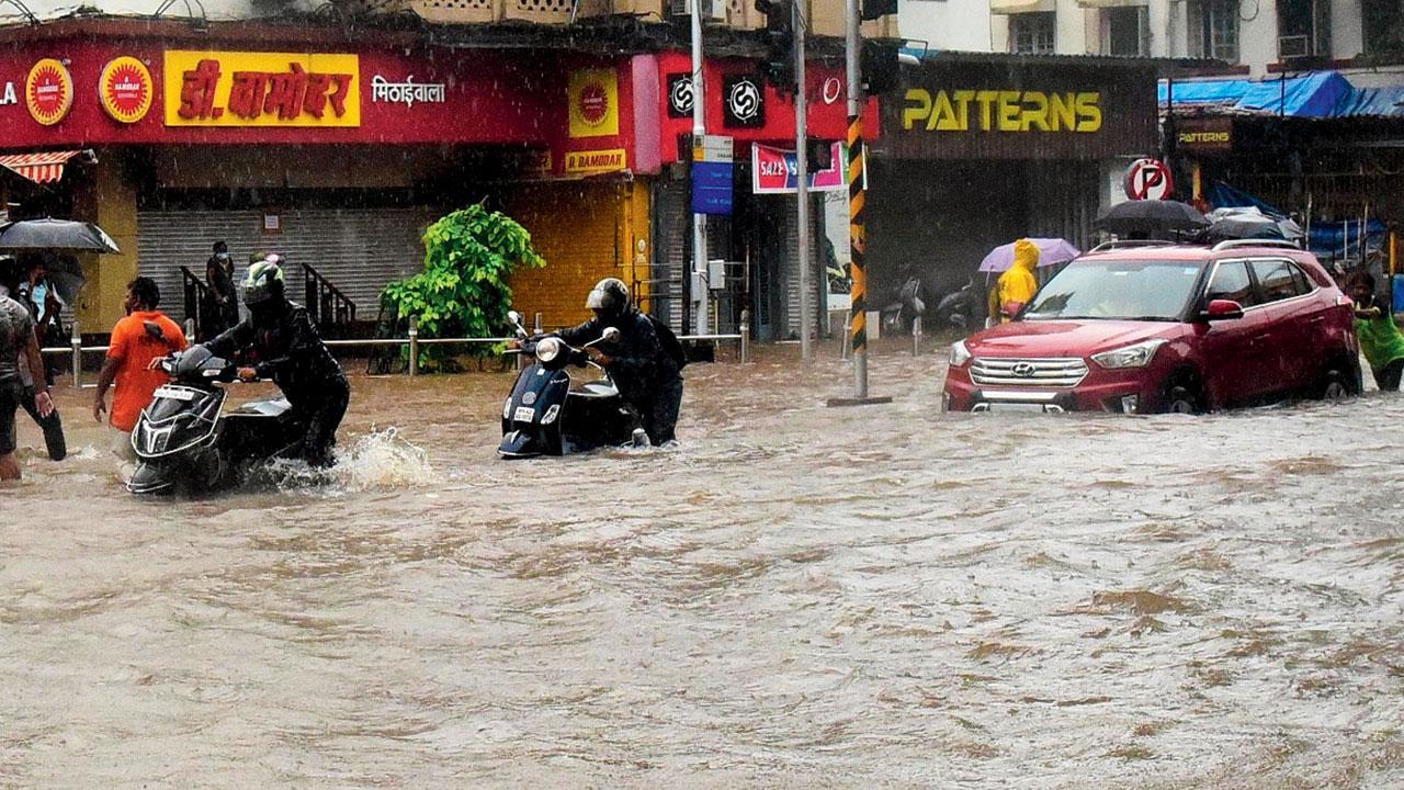 મુંબઈમાં ગઈ કાલે પડેલા વરસાદમાં દાદર ટીટીમાં ઘૂંટણ સમાં પાણી ભરાયાં હતાં અને હજી તો અનલૉક થયું નથી ત્યાં ફરી ગઈ કાલે મોટા ભાગની દુકાનો વેપારીઓએ બંધ રાખવી પડી હતી. સુરેશ કરકેરા