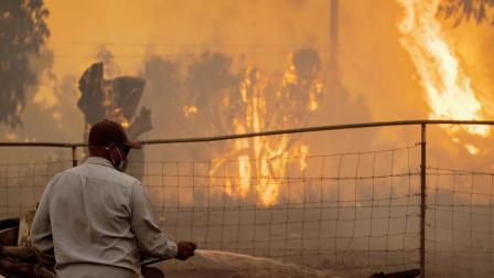 કેલિફાર્નિયાની દિક્ષણમાં આવેલા ગોલેટા સહિતના વિસ્તારોમાં જંગલમાં લાગેલી આગ વધુ ને વધુ ભયાનક બનતી જાય છે.  એ.એફ.પી.