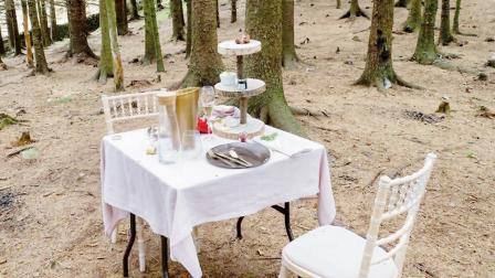 જંગલમાં સજાવ્યું ટેબલ