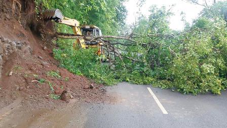 ભારે વરસાદના કારણે ડાંગ જીલ્લામાં ભેખડો અને વૃક્ષો રસ્તાઓ પર ધસી પડતા રસ્તા બ્લોક થઇ ગયા હતા. જોકે વહીવટીતંત્ર દ્વારા તાકીદે અડચણો હટાવીને રસ્તાઓ વાહન વ્યવહાર માટે ખુલ્લા કરાયા હતા.